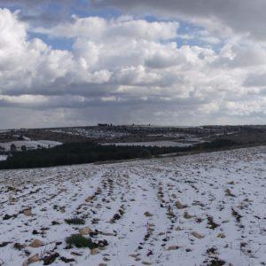 Murgia Neve